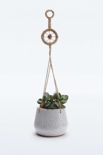 suspension plante anthropology